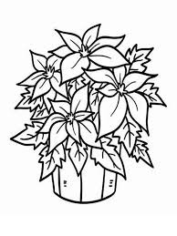 Poinsettia Flower Coloring Pages 4