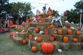Oklahoma Pumpkin Patches by Pumpkin Patch
