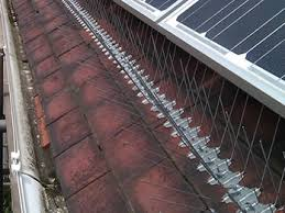 roofing bird proofing domestic bird netting suppliers protecting