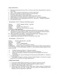 software team leader resume pdf sap mm resume pdf resume template free