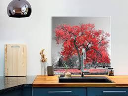 b b 0466 aq a murando spritzschutz glas für küche 60x60 cm