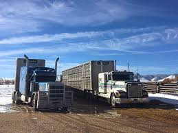 100 Ooida Truck Show Hours Of Service With ELD Mandate Challenging For Livestock Haulers
