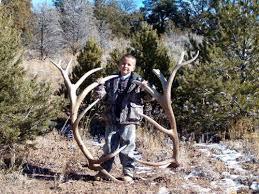 Shed Hunting Utah 2017 by Huge Utah Bull Elk Sheds Monstermuleys Com