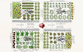 Planning an urban ve able garden