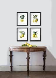 Botanical Print Set Of 4 Vintage Lemon Citrus Fruit Prints Tropical Summer Decor Art Kitchen Dinning Room Wall
