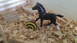 Tips And Tricks For Your Schleich Barn - YouTube Stal Plus Rijbaan En Weiland Gemaakt Voor Mn Dochter Dr Sleich Sleich Reviews Cws Stables Studio My Popsicle Stick Breyer Barn Youtube Stable 1 By Skater4life509 On Deviantart Box Avec Jument Lusitanienne Sleich Sleich Figurine Jeu 27 Mejores Imgenes De Barn Pinterest Panecillos Pin Wendy Bridges Toy Horses Horse Dream How To Make Your Stalls Realistic Simply Lovely Tidy Pinteres Reinvention Renovation Garage Sale Weekend Recap The Fisher Price Jackpot Purse