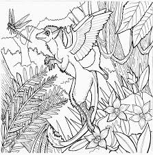Complex Coloring Pages Fairy World