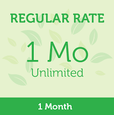 Regular Rate 1 Month Unlimited