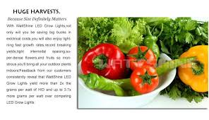 300w led grow light with 100pcs 3w led chips flower seeds tomatoes