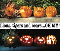 Dremel Drill Pumpkin Carving pumpkin carving lions tigers and bears oh my using fallen