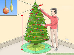 Making Christmas Tree Preservative by How To Care For A Christmas Tree 12 Steps With Pictures