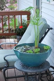 Aquascape Patio Pond Australia by Making A Pond In A Pot Mini Pond Pond And Minis