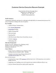 Good Sample Resume For Customer Service Executive Technical Support Cv Experience Resum 6776
