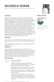 Project Coordinator Resume Example