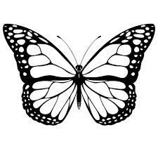 Mariposas Para Pintar PAPALLONES Mariposas Para Colorear