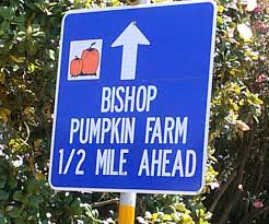 Hawes Farm Pumpkin Patch Anderson Ca by California Fall Pumpkin Patch U0026 Corn A Maze Are You That Woman