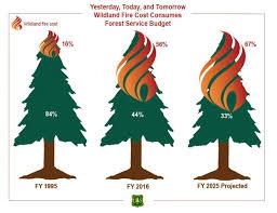 Usda Christmas Tree Permits Colorado by Salmon Challis Nf Salmonchallisnf Twitter