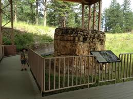 fossilized redwood tree picture of florissant fossil beds