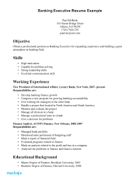 Professional Background Resume Examples Leadership Skills Samples Physic Minimalistics
