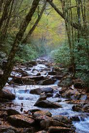 Pumpkin Patch Tallahassee Mahan by Best 25 Appalachian Mountains Ideas On Pinterest Blue Ridge