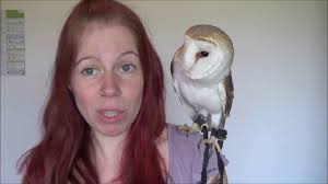 Basics Of Owning An Owl - YouTube 55 Best Owl Images On Pinterest Barn Owls Children And Hunting Owls How To Feed Keep An Owlet Maya A Brief Introduction The Common Types Of Six Reasons Why You Dont Want An Owl As Pet Bird Introducing Gizmo Baby Whitefaced Youtube 2270 Animals 637 Oh Meine Uhus I Love Owls My Barn Cat Baby By Disneyqueen1 Deviantart All Things Nighttime Predator Cute Animals