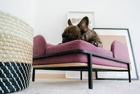 koja ein flexibler schlafplatz für den hund