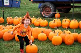 Pumpkin Patch Farms In Phoenix Az by Things To Do In Phoenix This Weekend Oct 6th Oct 8th 2017