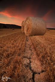 345 Best *Hay Bales, Stacks And (Jelly) Rolls* Images On Pinterest ... Top Country Wedding Songs Gac The Hay Is Baled Eden Hills Passionettes And Albany State Band Fight Songhay In The Middle Hauling Hay 1950s Farm Scenes Pinterest Bethunecookman University Lets Go Wildcatshay In Hd Youtube Haystack Lounge Decor My Wife Yvette Decor Best 25 Barn Party Decorations Ideas On Wedding Environmental Art Archives Schuylkill Center For Mchs Presidents Page Miller County Museum Historical Society Just Me June 2013 Pating Unique Bale Of Bales Straw