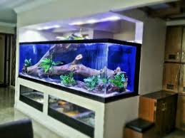 Residential Aquariums In India - Madoverfish Amazing Aquarium Designs For Your Comfortable Home Interior Plan 20 Design Ideas For House Goadesigncom Beautiful And Awesome Aquariums Cuisine Small See Here Styfisher Best Stands Something Other Than Wood Archive How To In Photo Good Depot Kitchen Cabinet Sale 12 To Home Aquarium Custom Bespoke Designer Fish Tanks Perfect Modern Living Room Lighting 69 On Great Remodeling Office 83 Design Simple Trending Colors X12 Tiles Bathroom 90