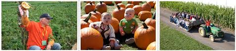 Pumpkin Patch In Long Island New York by F U0026w Schmitt Family Farm U2013 Melville Long Island Ny Fall