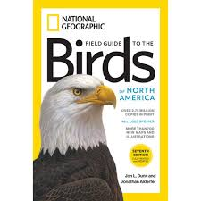 National Geographic Field Guide To The Birds Of North America, 7th ... National Geographic Backyard Guide To The Birds Of North America Field Manakins Photo Gallery Pictures More From Insects And Spiders Twoinone Bird Feeder Store Birds Society Michigan Mel Baughman Blue Jay Picture Desktop Wallpaper Free Wallpapers Pocket The Backyard Naturalist 2017 Cave Wall Calendar