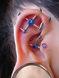 fraidy cats piercing 118 best piercings images on piercing ideas jewelry