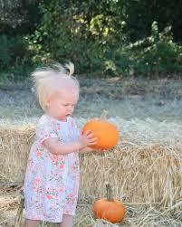 Live Oak Pumpkin Patch Santa Cruz by Filoli Gardens Fall Festival Well Traveled Wife