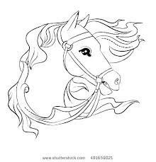 Horse Head Coloring Pages Sheets Of Horses Realistic Large Color Pag