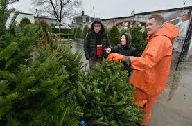 Christmas Tree Shop Pembroke Ma by Tree Shopping At The 11th Hour The Boston Globe