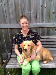 featured team member yvonne beattie the animal medical clinic