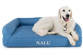 Top Rated Orthopedic Dog Beds by Orthopedic Dog Beds