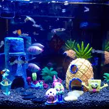 Spongebob Aquarium Decorating Kit by Spongebob Squarepants Aquarium Decorations 1000 Aquarium Ideas