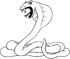 Snake Coloring Pages 3