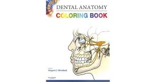 Dental Anatomy Coloring Book Project Awesome Free Download
