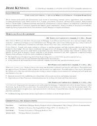 Professional Profile For Resume Examples Nursing Of Profiles Resumes S Engineers Marketing