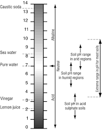 100 Ph Of 1 Soil PH Environment Land And Water Queensland Government