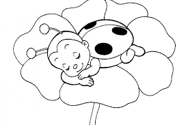 Best Ladybug Coloring Pages 33 On For Kids With
