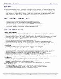 Personal Marketing Plan Example New Resume Professional Summary ...