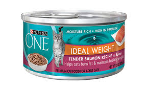 high protein cat food our cat food products purina one