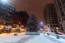 Christmas Tree Shop So Portland Maine by Christmas Tree Portland Maine Rainforest Islands Ferry
