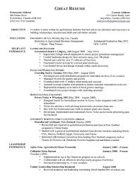 Excellent Resume Sample Example Of Good Phenomenal Examples For Teachers Assistant Pdf 480