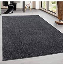 suchergebnis auf de für teppich 300x400