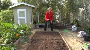 How To Hand-Plant Corn : Urban Garden - YouTube Modern Garden Plants Uk Archives Modern Garden 51 Front Yard And Backyard Landscaping Ideas Designs Best 25 Vegetable Gardens Ideas On Pinterest Vegetable Stunning Way To Add Tropical Colors Your Outdoor Landscaping Raised Beds In Phoenix Arizona Youtube Kids Gardening Tips Projects At Home Side Yard 55 Youll Fall Love With 40 Small 821 Best Images Plants My Backyard Outdoor Fniture Design How Grow A Lot Of Food 9 Ez Tips