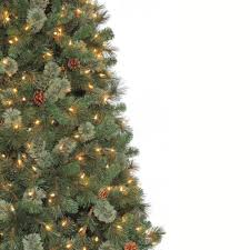 Snowy Dunhill Christmas Trees by Martha Stewart Living 9 Ft Alexander Pine Quick Set Artificial